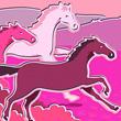 Про лошадей